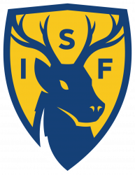 International Surrey Football